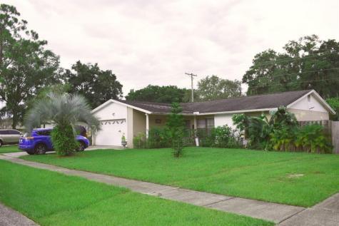 604 Bryan Terrace Drive Brandon FL 33511