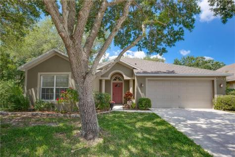 2002 Highview Fall Place Brandon FL 33510