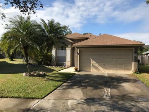 1411 Scotch Pine Drive Brandon FL 33511