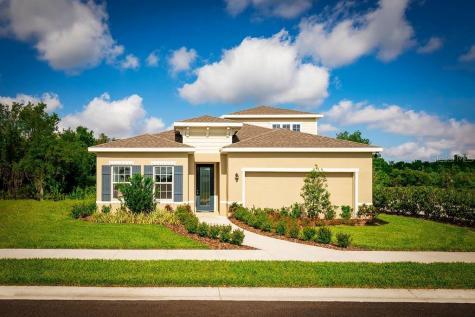297 Siesta Vista Court Davenport FL 33896
