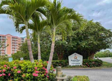 4516 Seagull Drive New Port Richey FL 34652