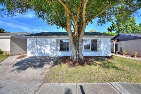 1209 Coolridge Drive Brandon FL 33511