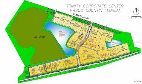 18 Trinity Odessa FL 33556