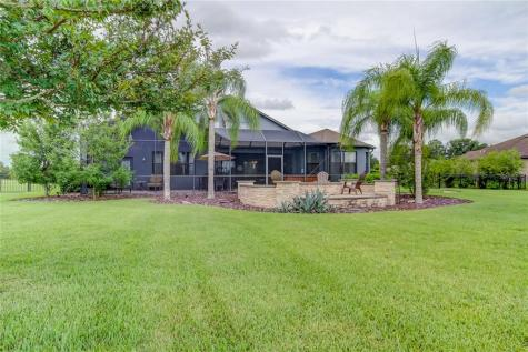 10909 Brice Tree Court Lithia FL 33547